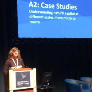 NCI Chair Prof Alison Hester at the second World Forum on Natural Capital