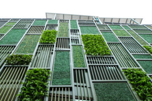 A green wall of a building with plants