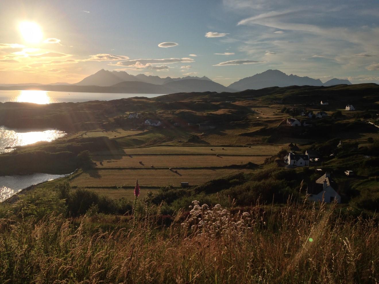 Farming landscape in a summer evening