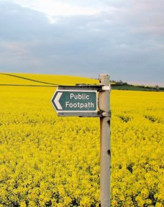 Foot path sign in a yellow field
