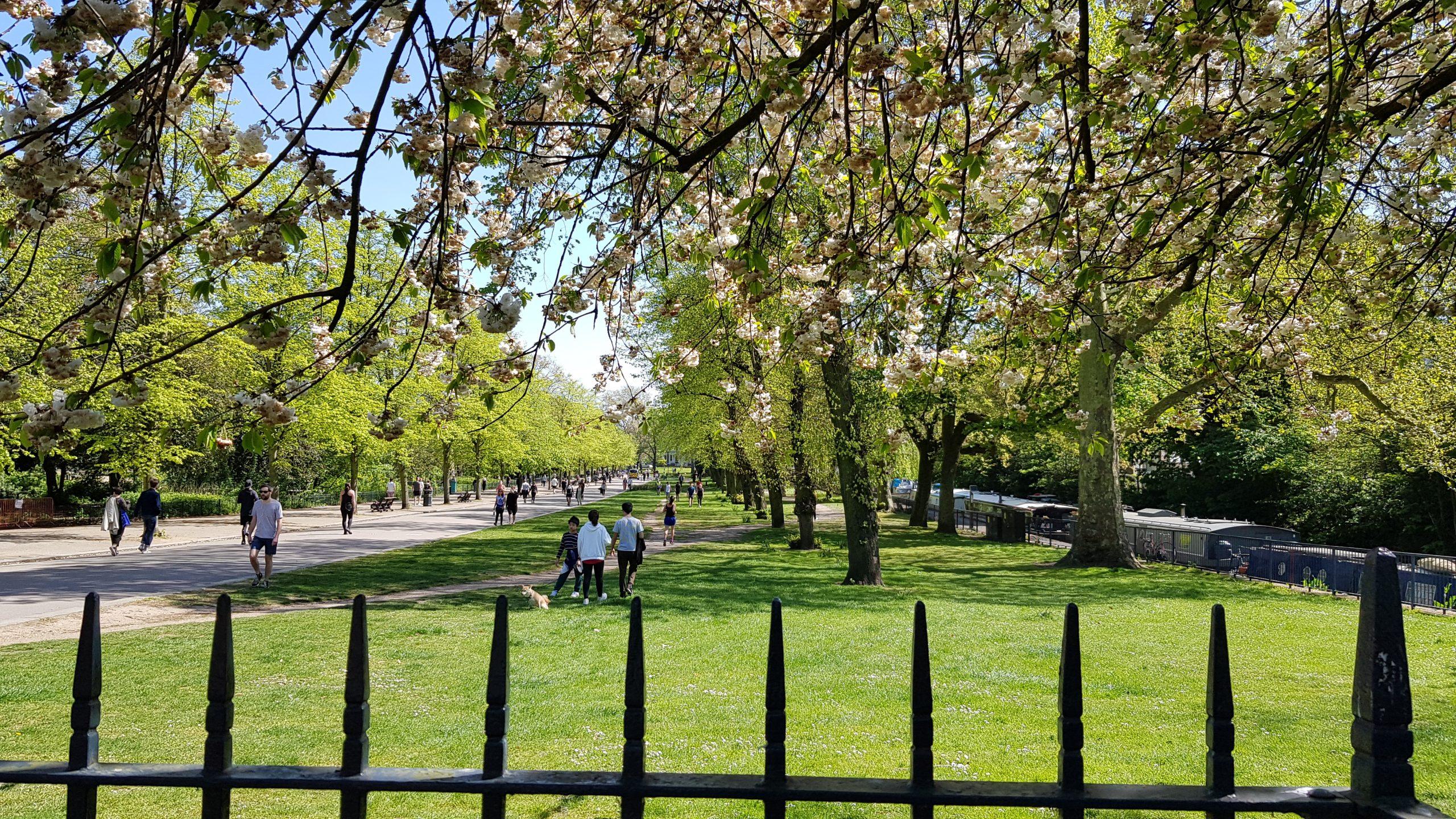 London's Victoria Park during coronavirus lockdown