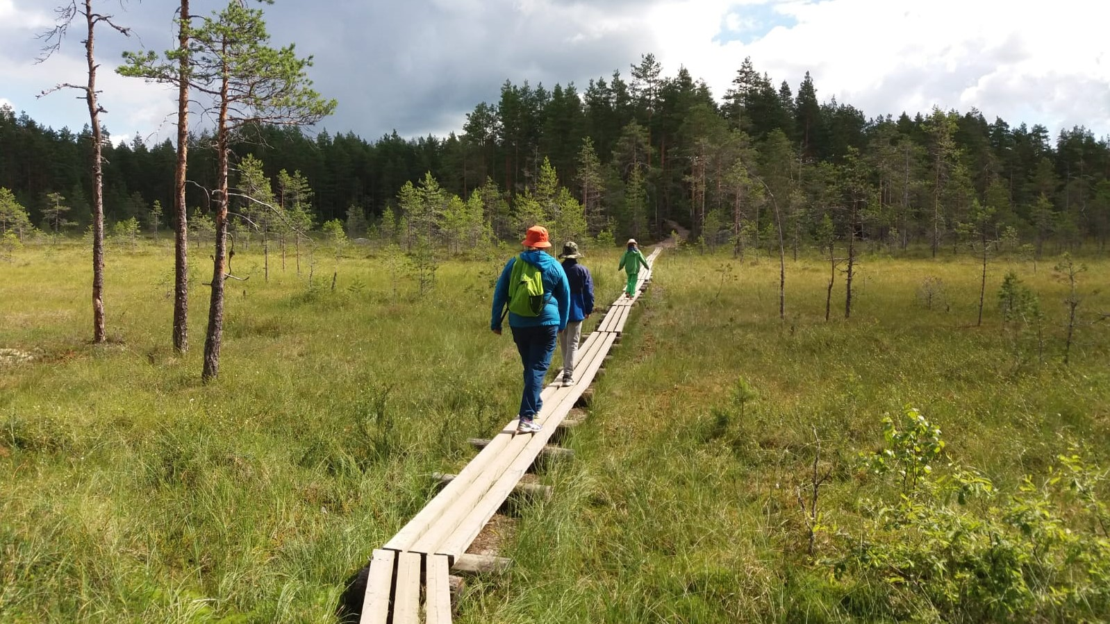 Family walking on wooden trail across a peat bog