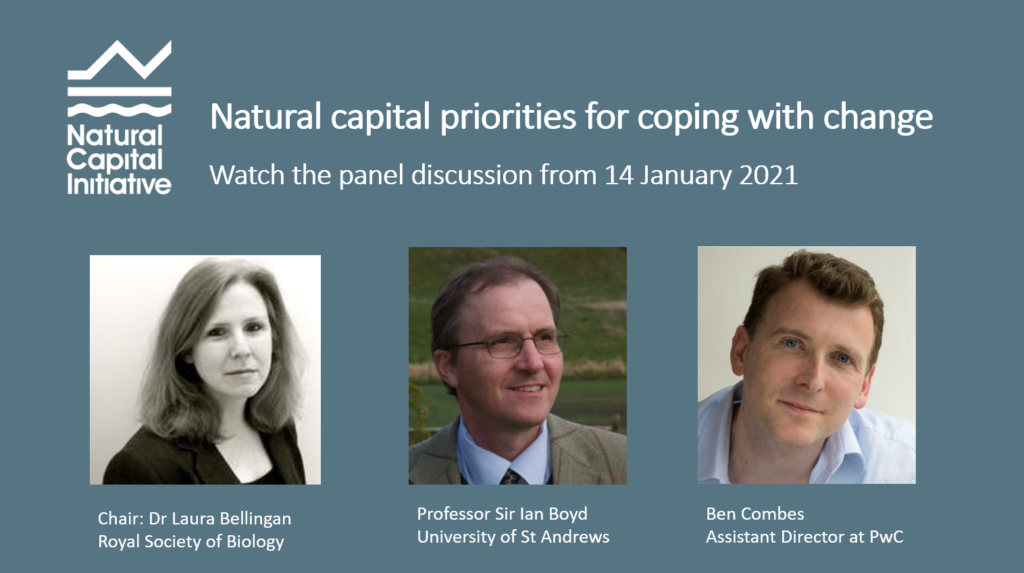 Watch the panel discussion by clicking here
